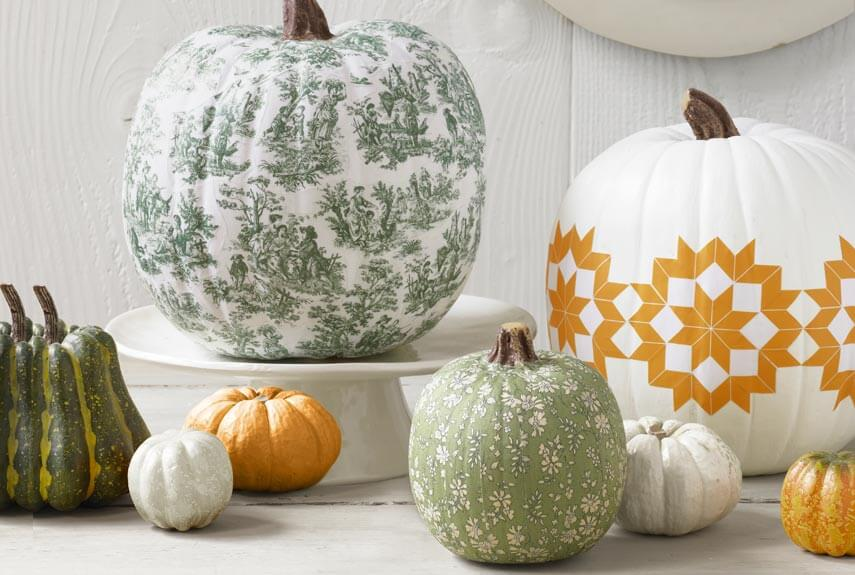decorative pumpkin ideas from ace of gray in gray ga. Black Bedroom Furniture Sets. Home Design Ideas