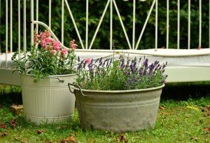 Container Garden DIY