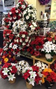 poinsettia, christmas flowers