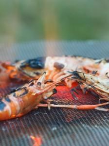 grilling fresh shrimp