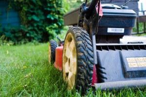 fall mower care