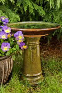 bird bath and flowers