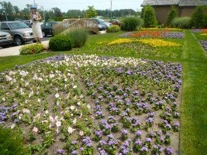 flowerbed quilt