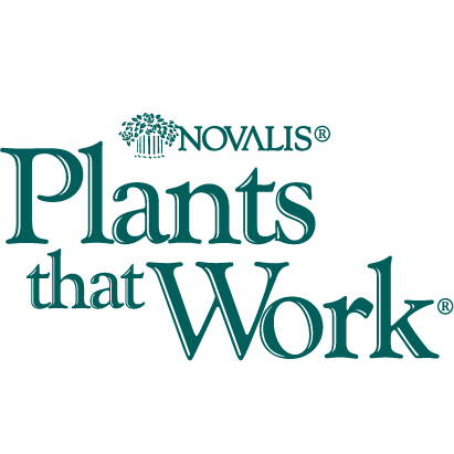 Novalis Plants that Work